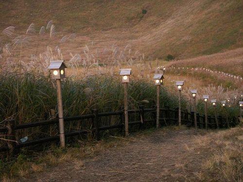 ライトアップの灯篭
